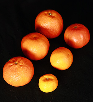 ravings of a canadian expat christmas oranges - Christmas Oranges