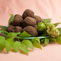 hop flavored dark chocolate truffles